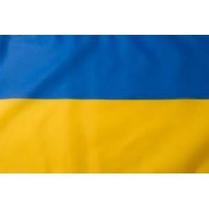 Флаг Украины  элит